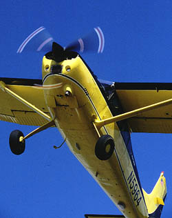 Cessna 185 Pilot Report